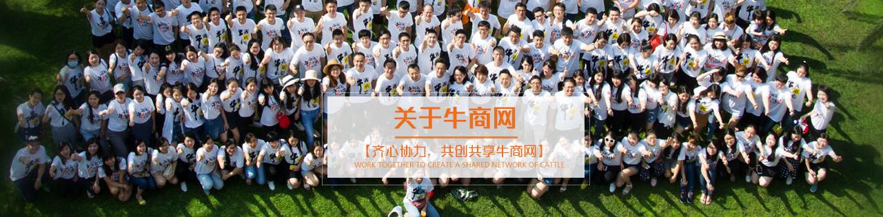 深圳营销型网站多少钱_招商-深圳市牛商网络股份有限公司