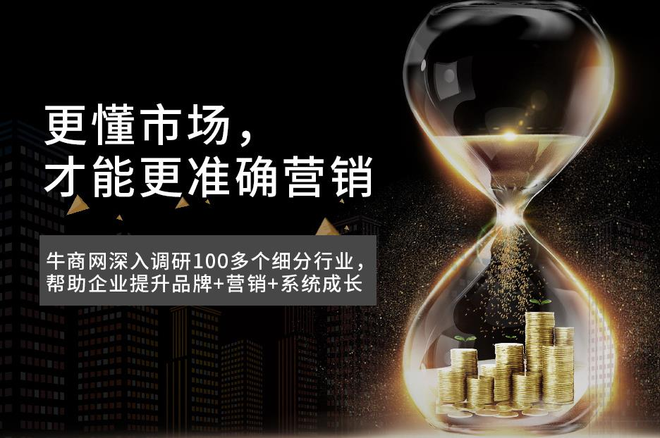 湛江营销型网站代理_专业代理哪家好-深圳市牛商网络股份有限公司