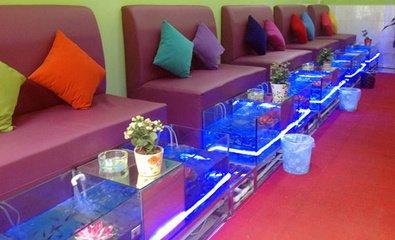 专业鱼疗缸设备安装_专业娱乐休闲项目合作报价-韶山市众诚设备销售有限公司