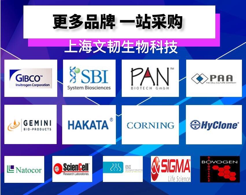 原装胎牛血清采购_胎牛血清价格相关-上海文韧生物科技有限公司
