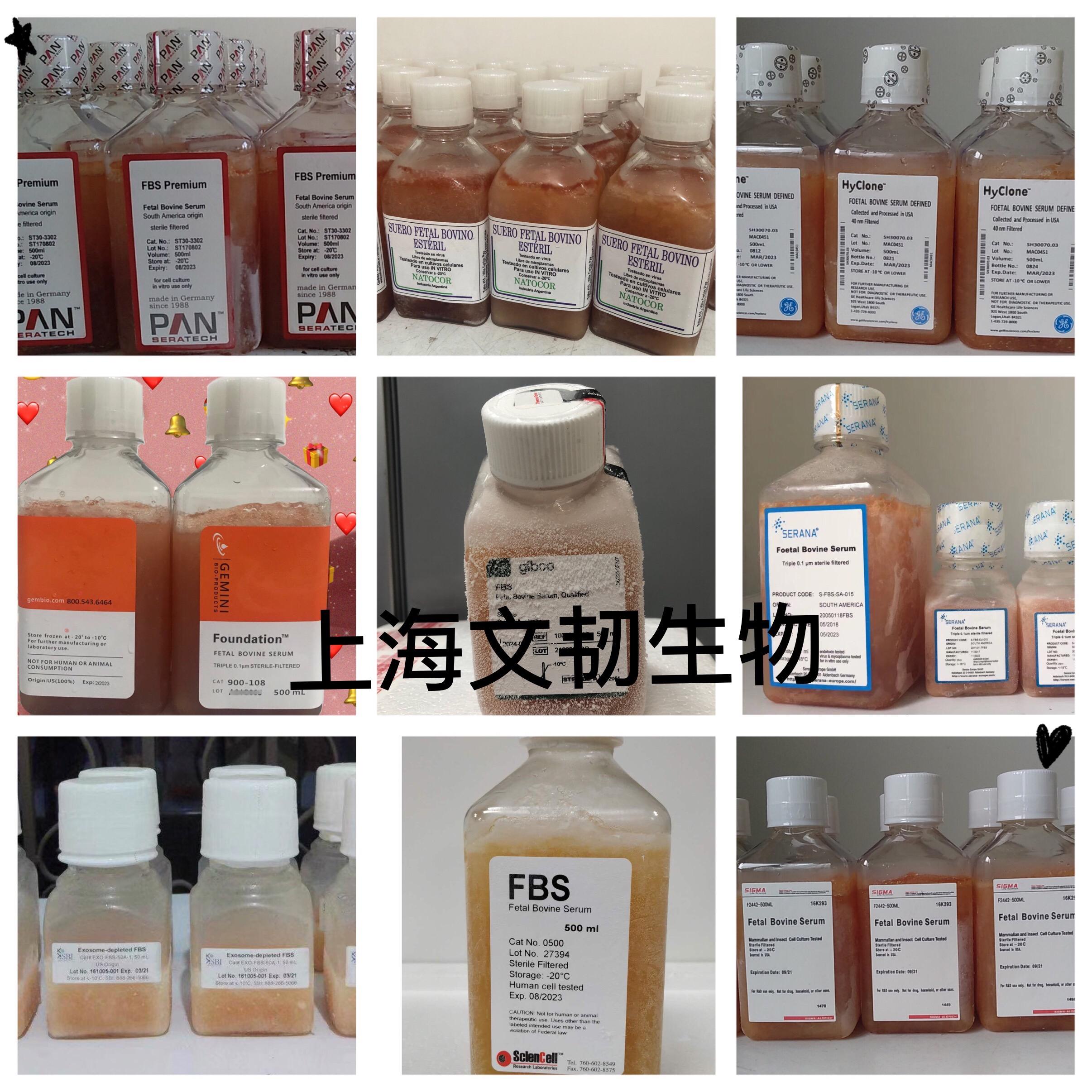04-002-1A胎牛血清_牛血清蛋白相關-上海文韌生物科技有限公司