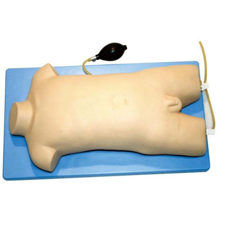 口碑好的儿童股静脉与股动脉穿刺训练模型推荐_提供哪家好-上海康宸科教设备有限公司