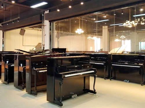 珠江恺撒堡立式钢琴系列_国产长江键盘类乐器价格表-河南欧乐乐器批发有限公司