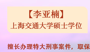 刑事_法律服务-上海译墨信息科技有限公司