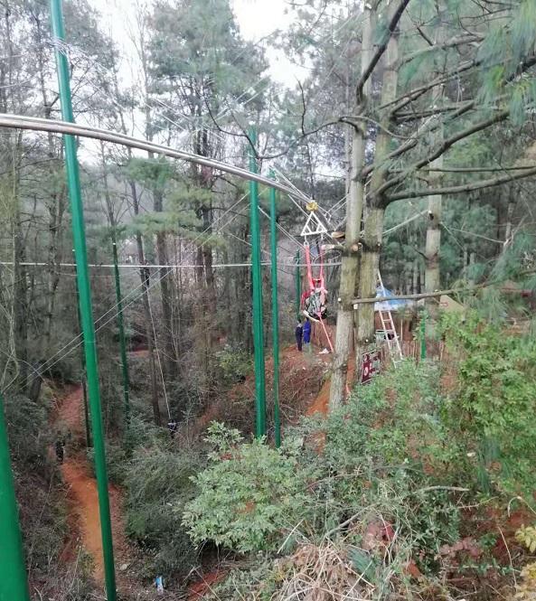 山西丛林过山车造价_其它游艺设施相关-河南盛乐游乐设备有限公司