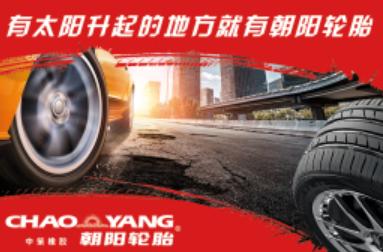 广饶朝阳轮胎批发电话_轮胎维修设备相关-济南大铭汽车配件有限公司