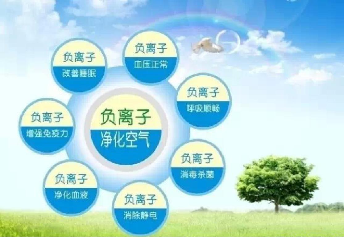 生态负氧离子厂家_等离子空气净化器相关-四川盘古灵珠科技有限公司
