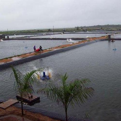 陕西排水板生产厂家_毛细排水板相关-德州宇润土工材料有限公司
