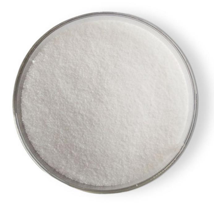 扬州进口氨基糖功效-山东卫康生物医药科技有限公司