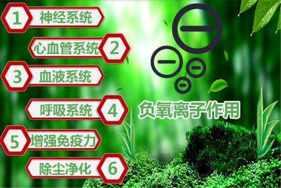 提供儿童身高_儿童床相关-四川盘古灵珠科技有限公司