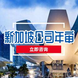 湖南口碑好的新加坡公司年审价格 专业秘书服务报价