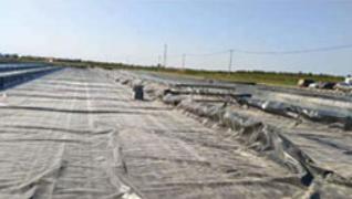 垃圾场覆盖土工膜批发_hdpe土工膜相关-德州东方新材料工程有限公司