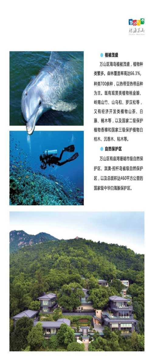 白沥岛住宿打卡_广东旅游服务网站-珠海万山海洋开发试验区