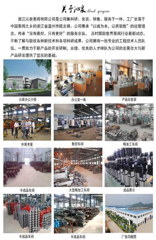 原装进口自吸泵定做_卧式自吸泵相关-浙江沁泉泵阀有限公司