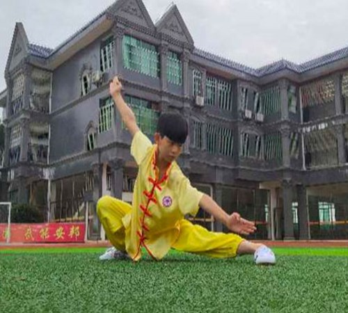 衡阳文武学校联系电话_知名的学费-衡南县彭飞文化武术学校