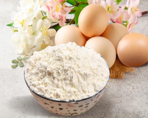 泰安口碑好的鸡全蛋粉生产厂家_正宗蛋制品哪家便宜-山东新富龙生物工程股份有限公司