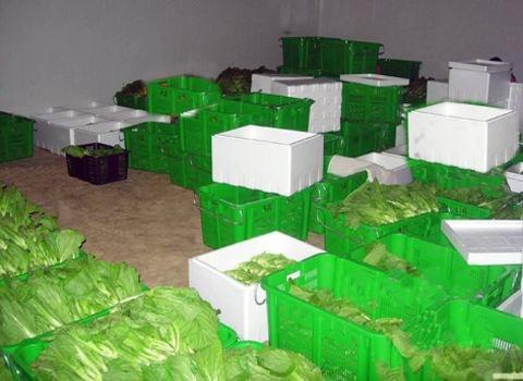 酒店食材配送哪里找_成都食品、饮料厂家-锦江区盛大农副产品批发配送经营部
