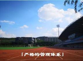 济南权威体育升本机构_有资历的-山东速度体育发展有限公司
