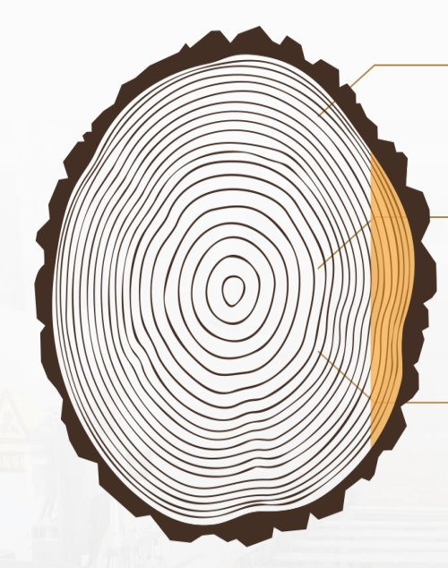 青岛地热地板生产厂家_实木地板-青岛楷达木业有限公司