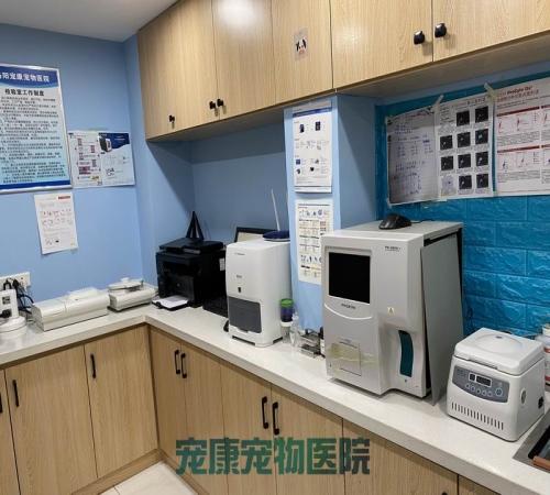 洛陽寵物醫院排名_知名寵物醫院電話-洛陽市高新開發區寵康寵物醫院