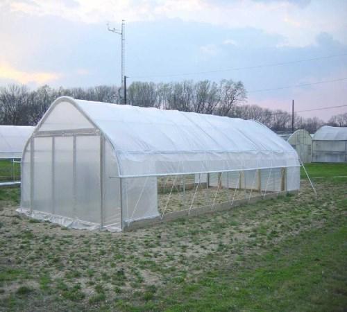 日光温室蔬菜大棚生产厂家 单栋蔬菜大棚相关