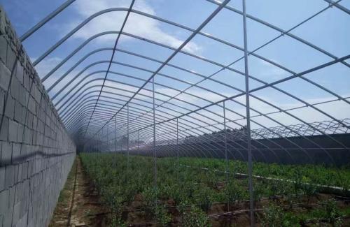 青海温室大棚成本 地下温室、大棚
