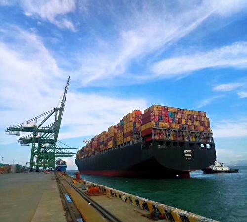 上海货代集团 天津国际海运空运