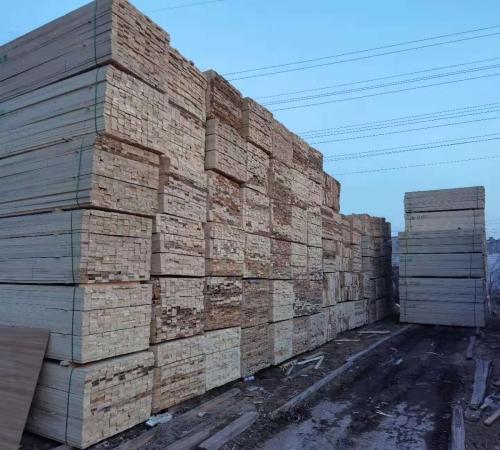 建筑木材價格 進口建筑木材廠家