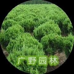 園林綠化養護 綠化設計價格相關