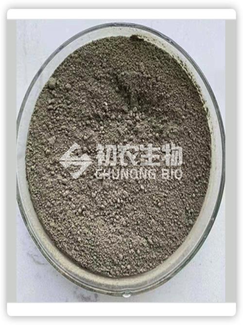 国内注册拜赖青霉对水稻的作用_菌剂生物肥料菌如何使用-山东初农生物科技有限公司