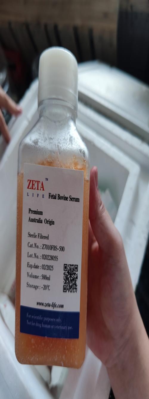 北京澳洲胎牛血清多少錢_Zeta Life生化試劑和南美胎牛血清的區別-深圳市安培生物科技有限公司