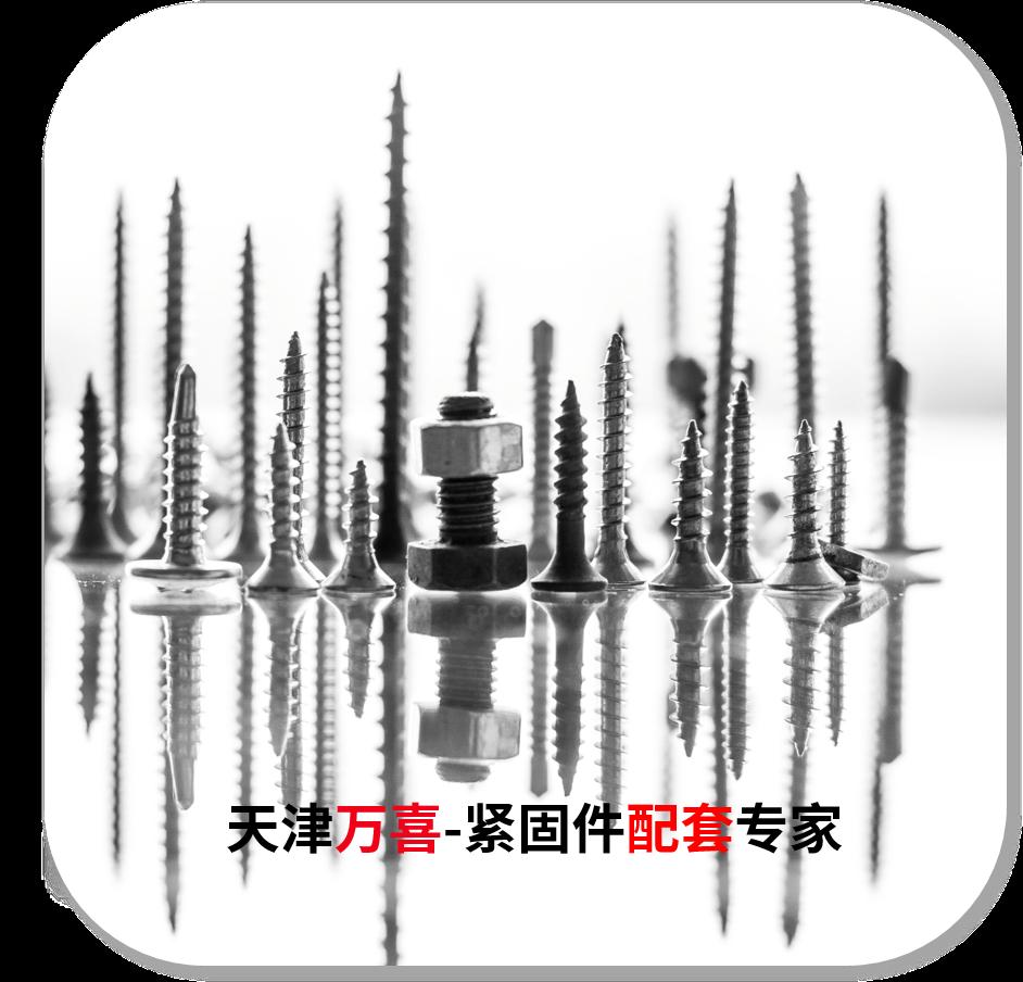 北京盘头螺钉商家_上海碳钢盘头螺钉_万喜(天津)紧固件有限公司